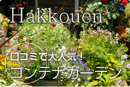 Hachikouen 口コミで大人気!コンテナガーデン